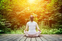 Dreamtime young-woman-meditating-forest-zen-meditation-healthy-breathing-sitting-wooden-floor-relax-spiritual-health-42811283