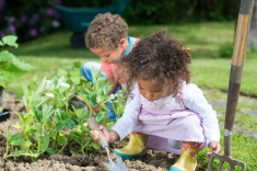stock-photo-91240479-close-up-of-biracial-little-girl-and-boy-gardening